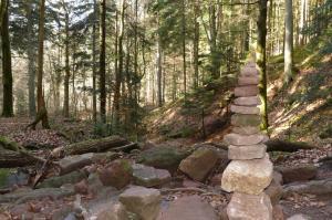 5. Foto Wolfschlucht Kunst im Wald Foto oller